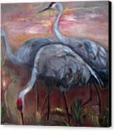 Sandhill Cranes Canvas Print by Susan Hanlon