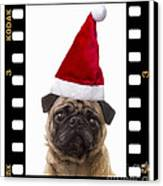 Santa Pug - Canine Christmas Canvas Print by Edward Fielding