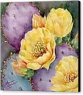 Santa Rita In Bloom Canvas Print