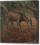 Saola Canvas Print by ACE Coinage painting by Michael Rothman