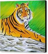 Save Tiger Canvas Print by Tanmay Singh