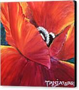 Scarlet Poppy Canvas Print by Tanja Ware