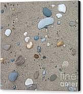 Scattered Pebbles Canvas Print by Margaret McDermott