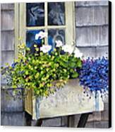 'sconset Window Box Canvas Print by Karol Wyckoff
