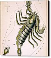 Scorpio Constellation  1825 Canvas Print by Daniel Hagerman