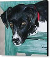 Scout Canvas Print by Michele Turney