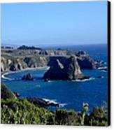 Sea Coast Of Northern California Canvas Print