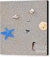 Sea Swag - Light Blue Canvas Print by Al Powell Photography USA