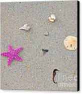 Sea Swag - Pink Canvas Print