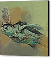 Sea Turtle Canvas Print by Michael Creese