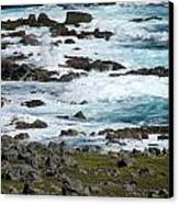 Seafoam Canvas Print by Andrea Dale
