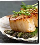 Seared Scallops Canvas Print