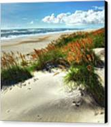 Seaside Serenity I - Outer Banks Canvas Print by Dan Carmichael