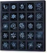 Snowflake Collage - Season 2013 Dark Crystals Canvas Print by Alexey Kljatov