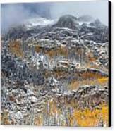 Seasonal Chaos Canvas Print by Darren  White