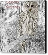 Season's Greetings Card Winter Barred Owl Canvas Print