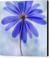 Shades Of Blue II Canvas Print