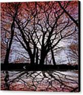 Shadow Secrets Canvas Print