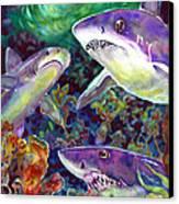 Sharks Canvas Print by Ann  Nicholson