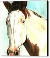 Shawnee Canvas Print by Linda L Martin