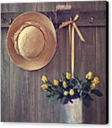 Shed Door Canvas Print by Amanda Elwell