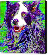 Sheep Dog 20130125v4 Canvas Print