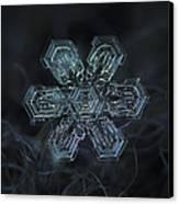 Snowflake Photo - Shine Canvas Print by Alexey Kljatov