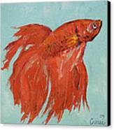 Siamese Fighting Fish Canvas Print by Michael Creese