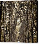 Silence Canvas Print by Suradej Chuephanich
