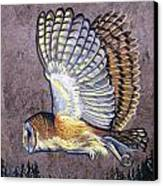 Silent Night Owl Canvas Print by Anne Shoemaker-Magdaleno
