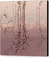 Silent Rhapsody. Sacred Music II Canvas Print by Jenny Rainbow