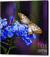 Silver And Gold Canvas Print by Lois Bryan