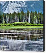 Silver Reflections Canvas Print