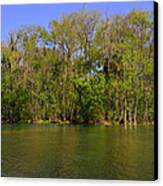 Silver Springs - Old-style Florida Canvas Print by Christine Till