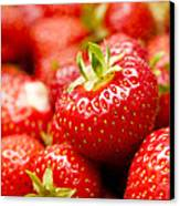 Simply Strawberries Canvas Print by Anne Gilbert