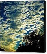 Skyward Canvas Print by Ella Char