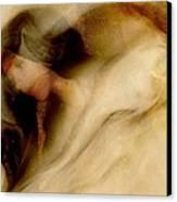 Sleep Well Canvas Print by Gun Legler