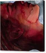 Sleeper Head Canvas Print by Graham Dean