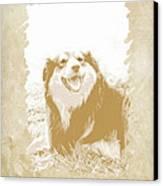 Smile II Canvas Print by Ann Powell