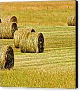Smoky Mountain Hay Canvas Print by Frozen in Time Fine Art Photography