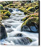 Smoky Mountain Rapids Canvas Print by Victor Culpepper