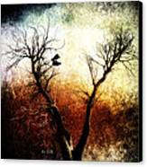 Sneakers In The Tree Canvas Print