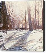 Snow At Broadlands Canvas Print by Paul Stewart