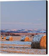 Snow Covered Bales Canvas Print by Scott Bean