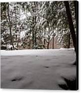 Snow In Shade  Canvas Print