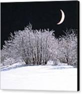 Snow In The Moonlight Canvas Print by Giorgio Darrigo