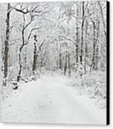 Snow In The Park Canvas Print by Raymond Salani III