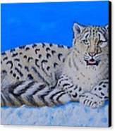 Snow Leopard Canvas Print by David Hawkes