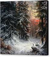 Snow Scene In The Black Forest Canvas Print