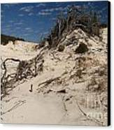 Snow White Dunes Canvas Print